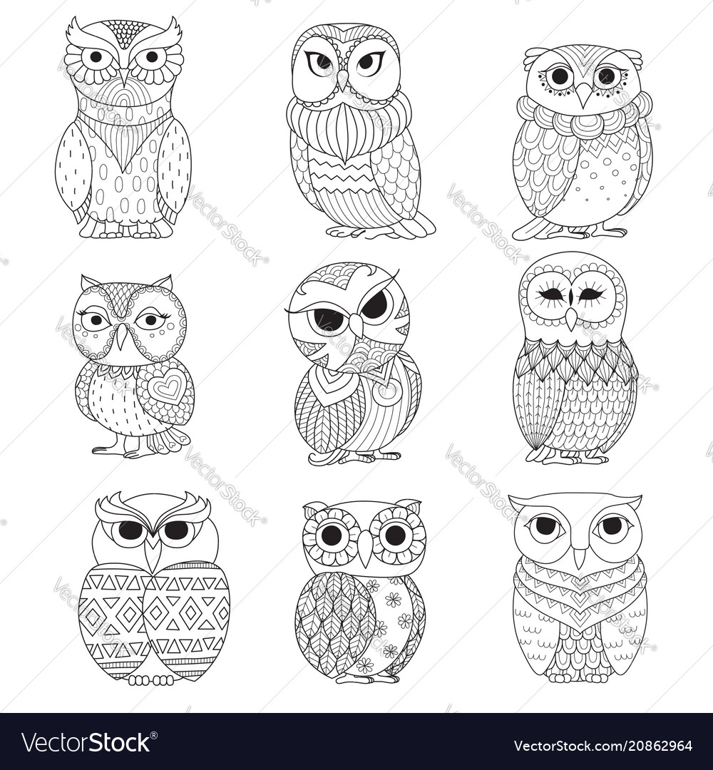 9 owls coloring books vector image