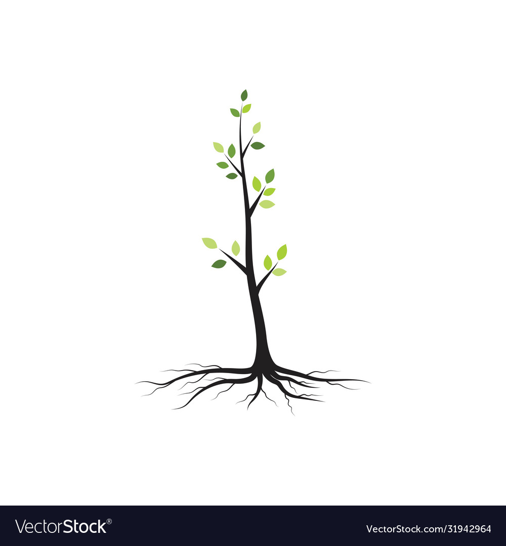 Tree branch illustration design