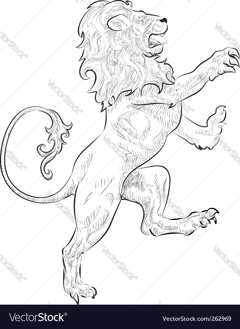 Lion illustration vector image