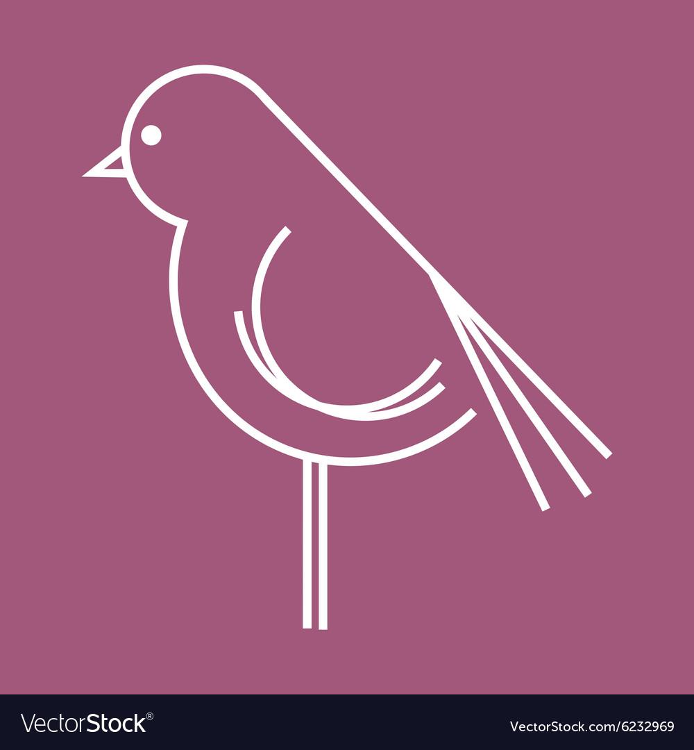 Ptica koka petao simple2