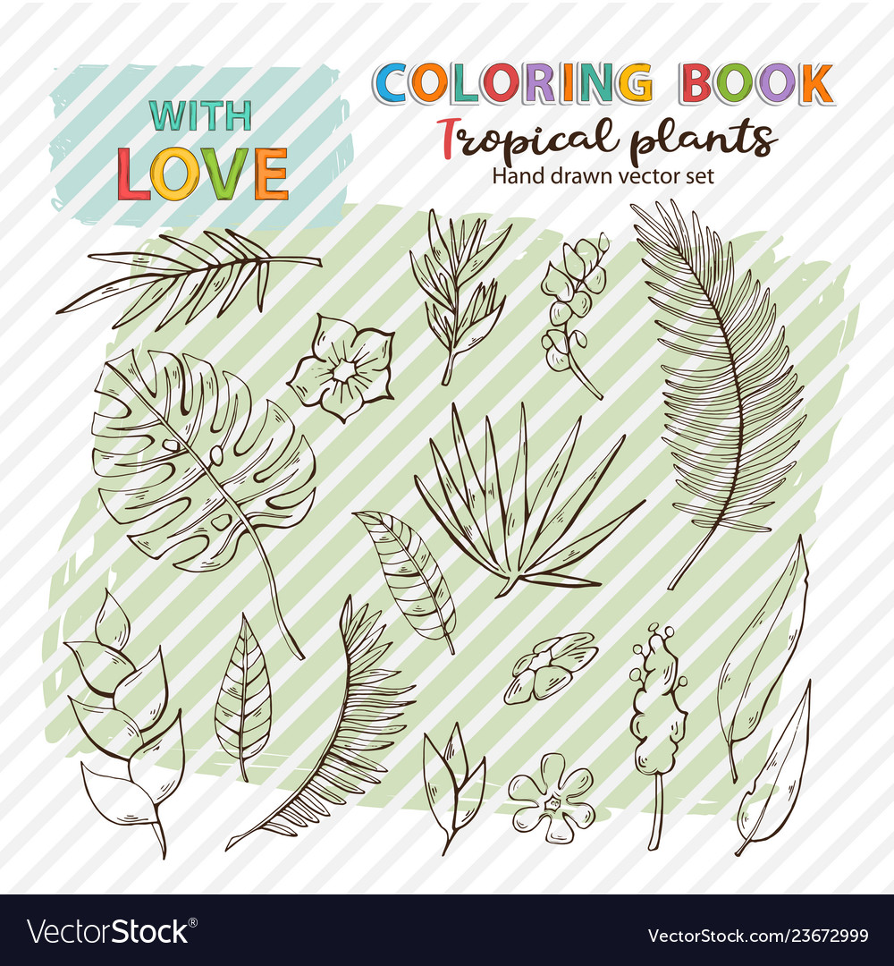 Coloring page antistress tropical plants