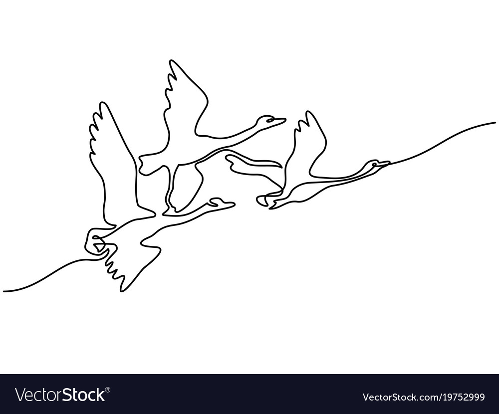 Continuous one line drawing flying swans logo
