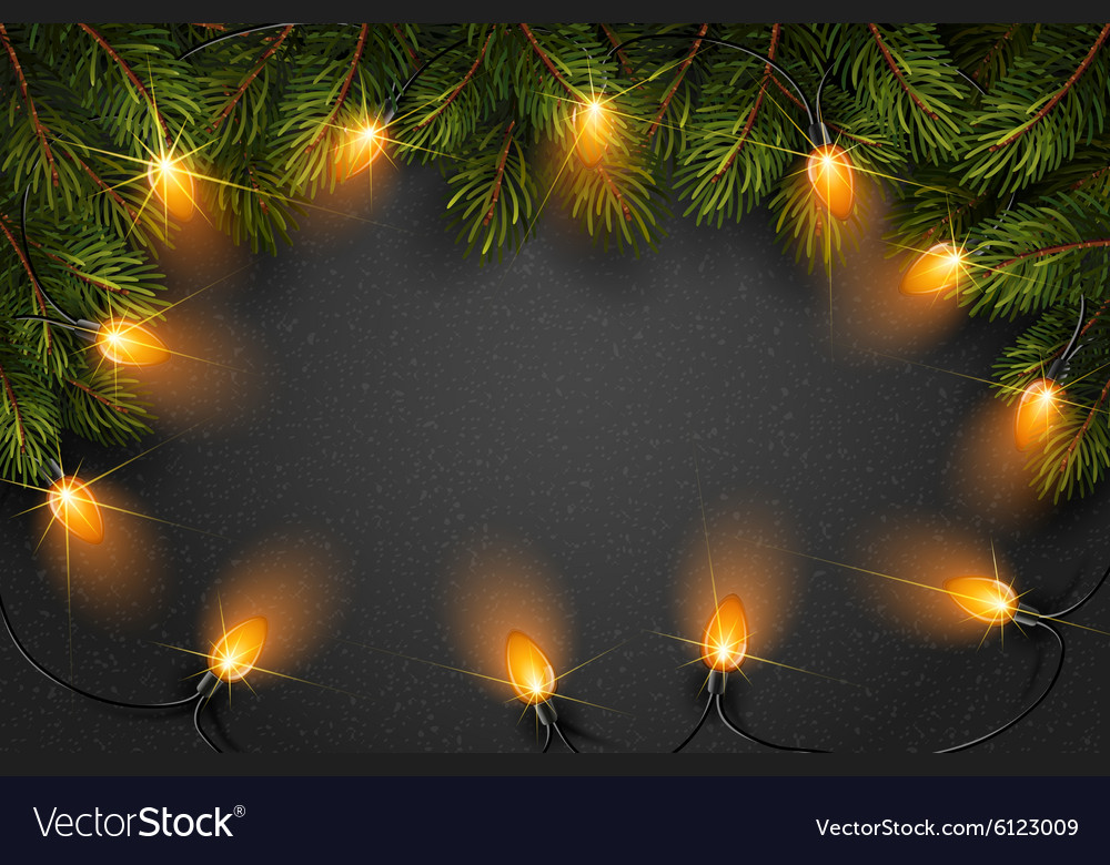 Christmas light with fir branches