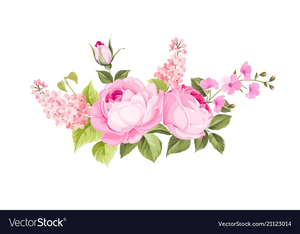 Blooming spring flowers vector image