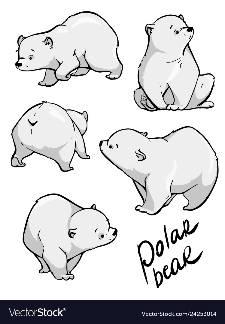 Cute Polar Bear Flat Hand Drawn Design