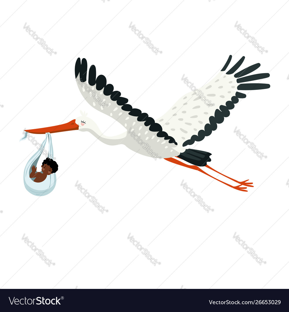 A stork carries bundle with baby in its beak