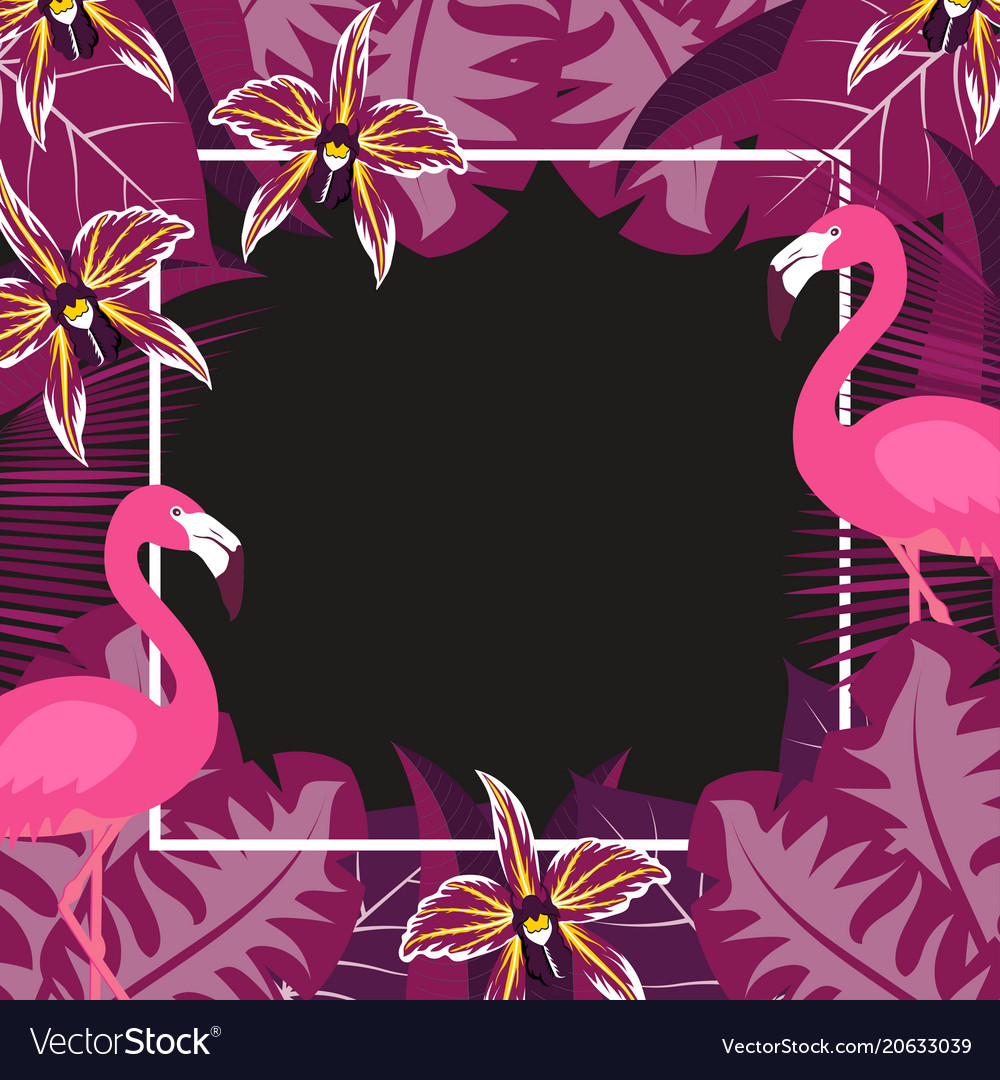 Flower flamingo frame 2 vector image
