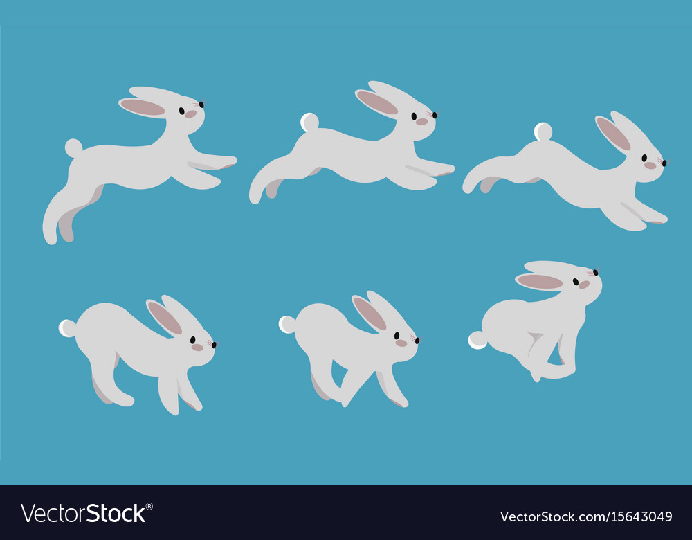 Animation cycle of running a harerabbit motion