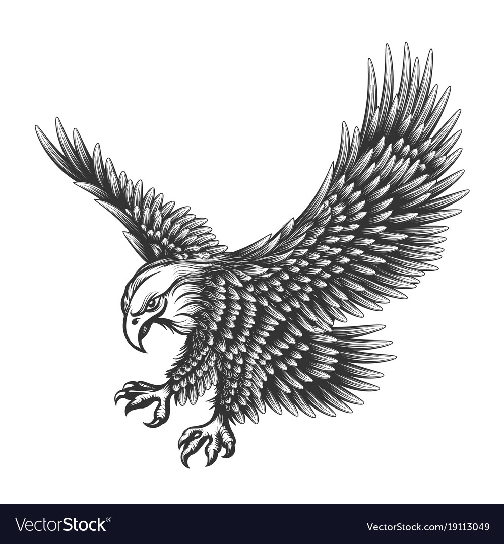 Eagle engraving