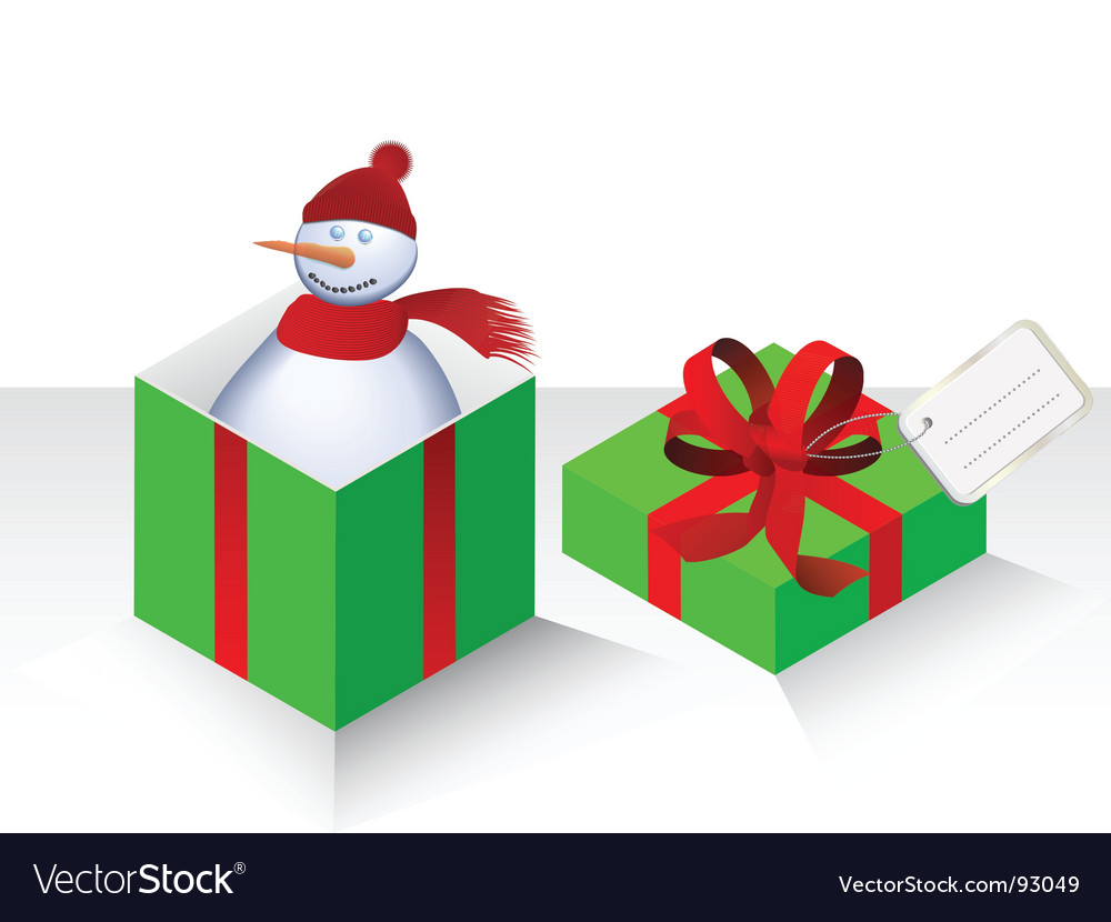 Snowman and present vector image