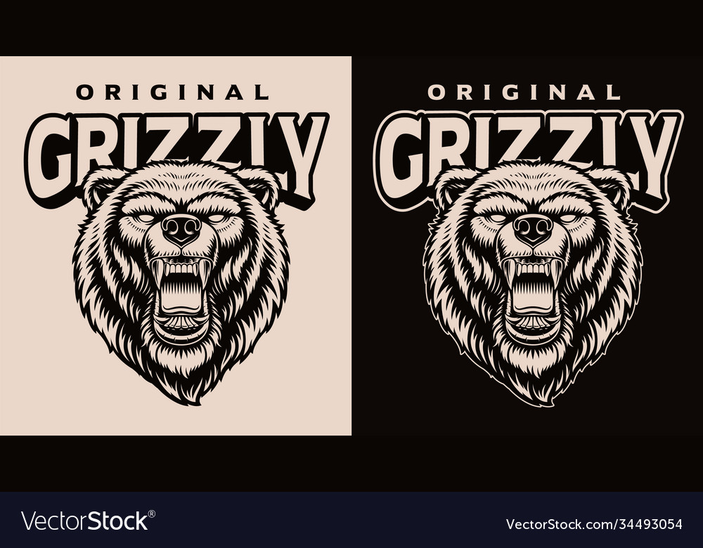 A black and white a grizzly head