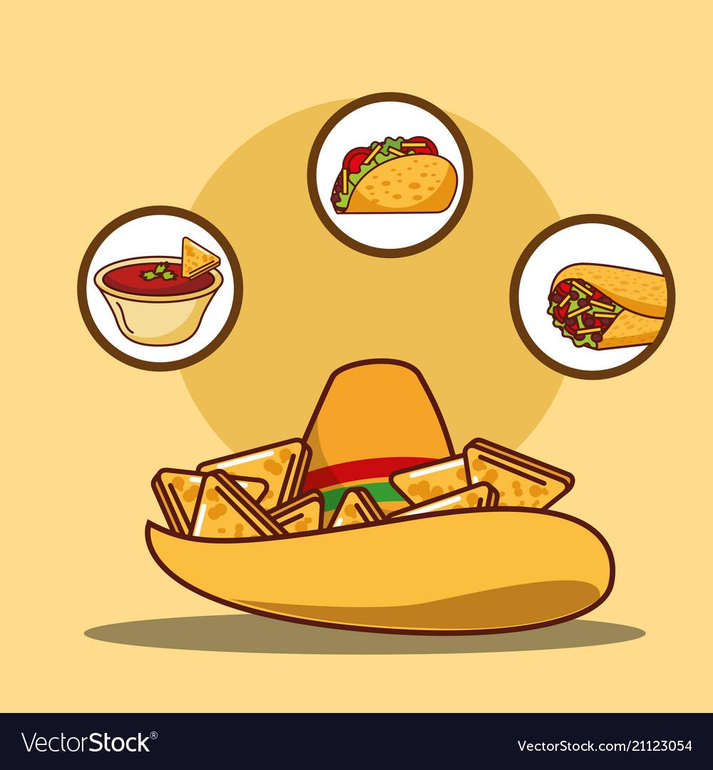 Delicious hat nacho sauce taco and burrito vector image