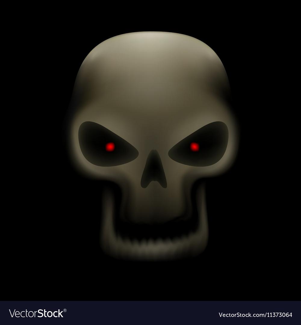 Skull with no teeth