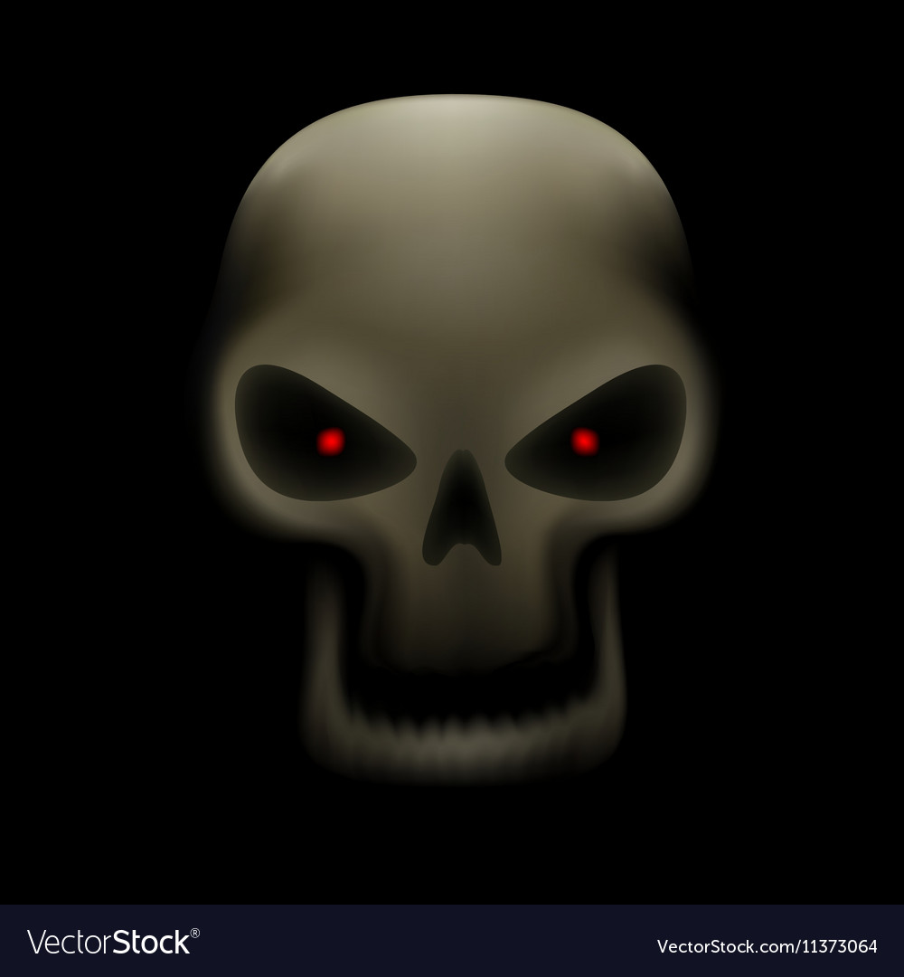 Skull with no teeth vector image