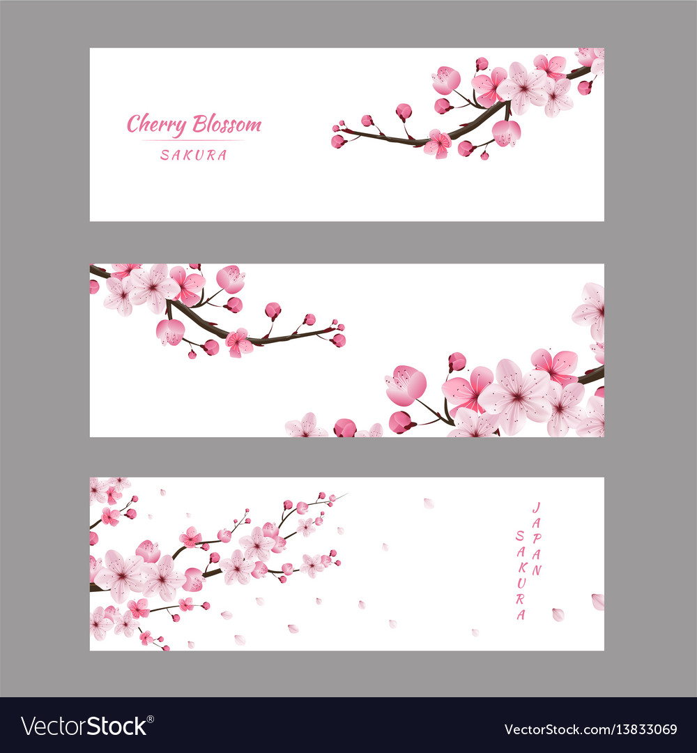 Cherry blossom collection greeting cards