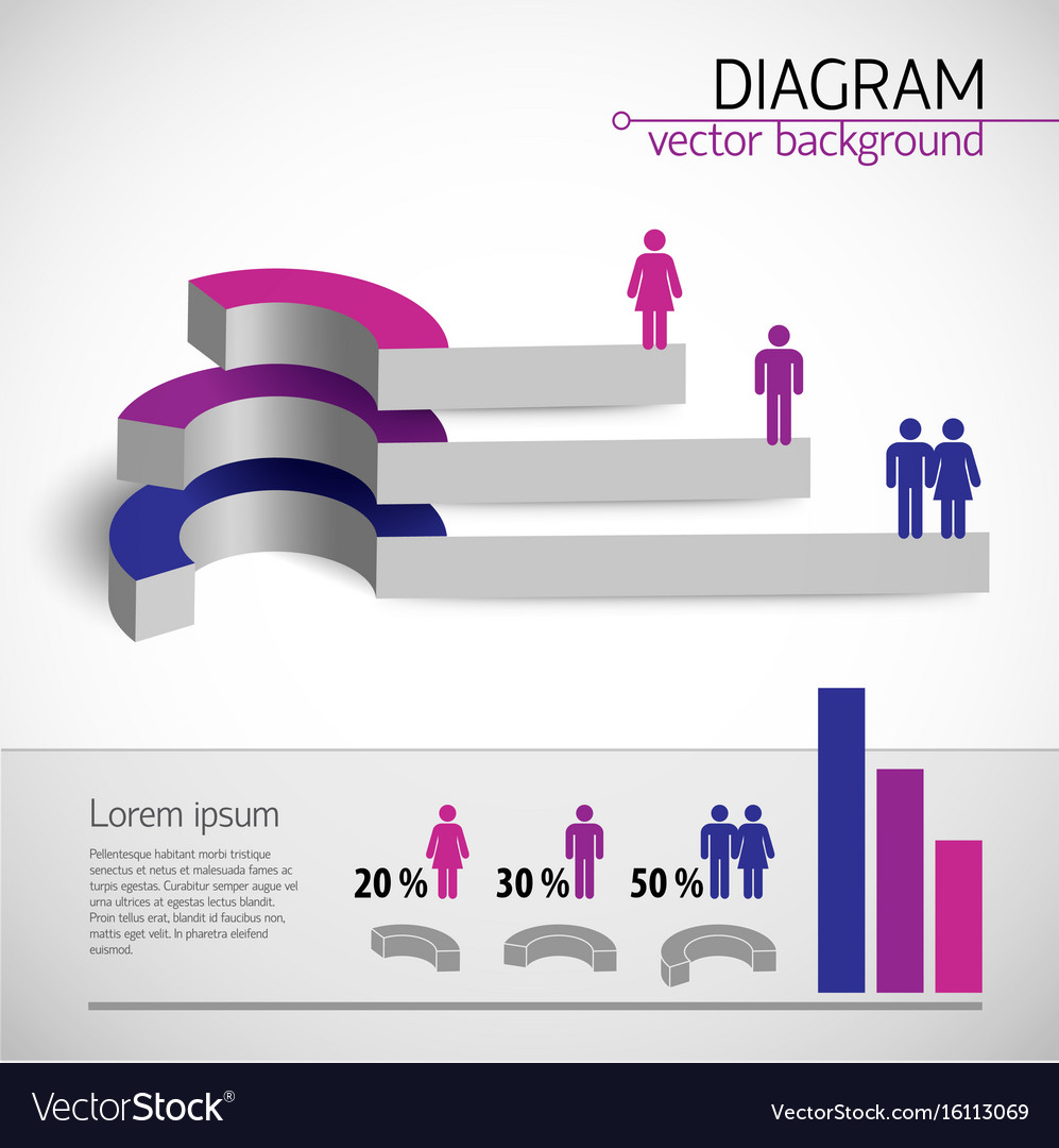 Colored diagram template vector image