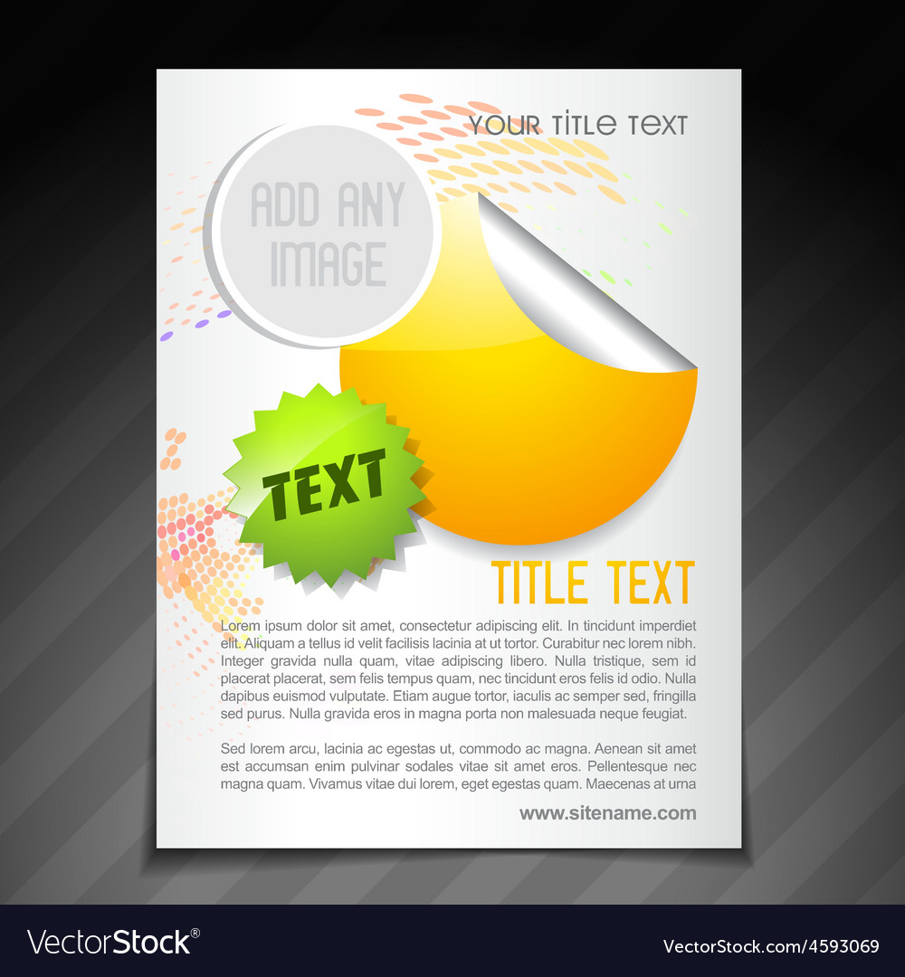 promotion brochure flyer poster template vector image