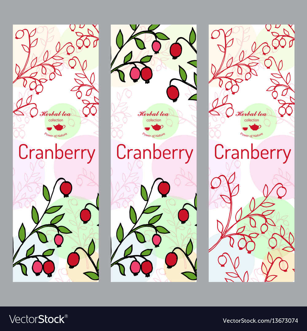 Herbal tea collection cranberry banner set