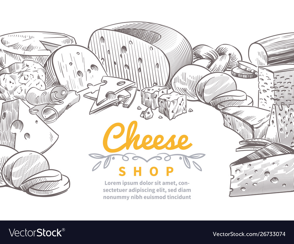Sketch cheese background tasty cheeses brie feta
