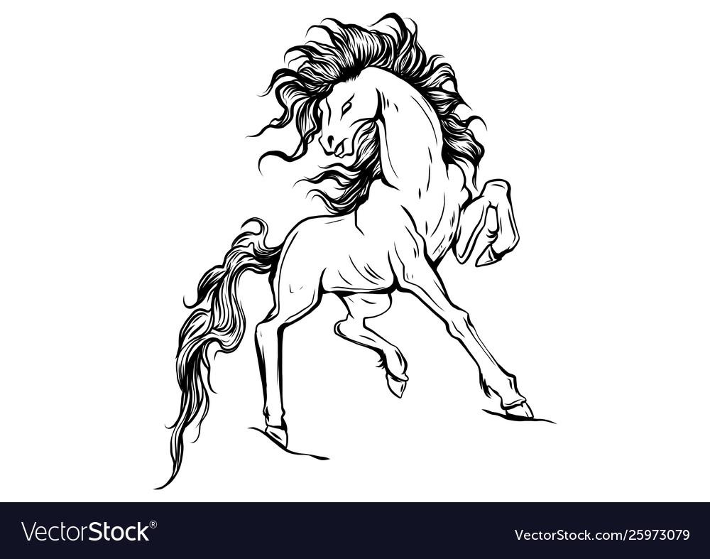 Silhouette a running horse