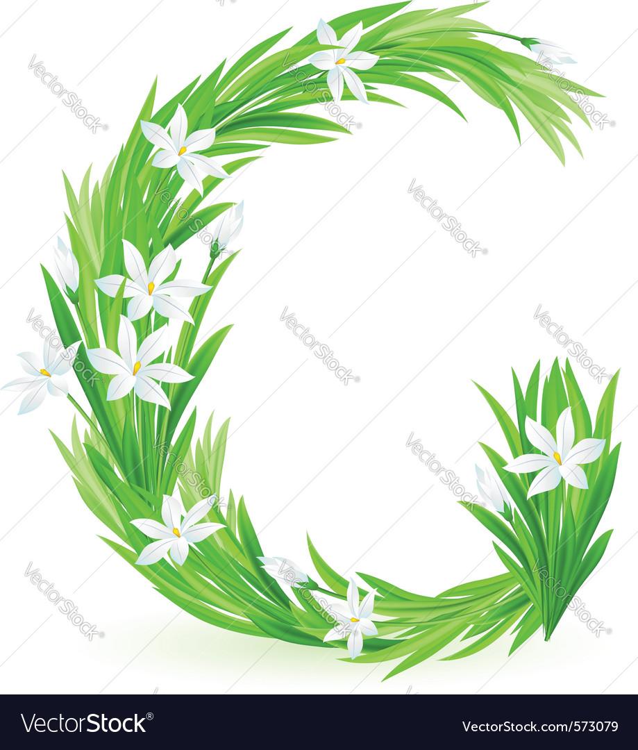 Spring flowers alphabet g vector image
