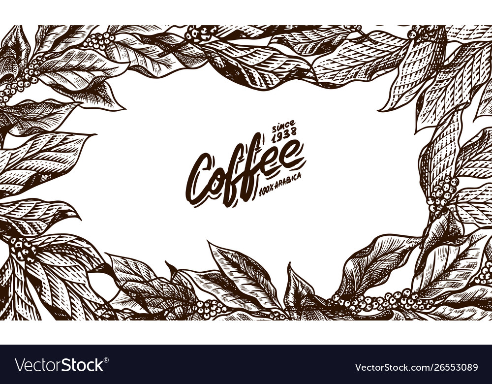 Coffee leaves background in vintage style hand