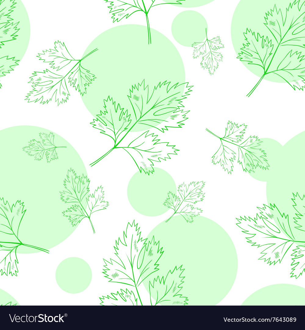 Seamless pattern with parsley leafs vector image