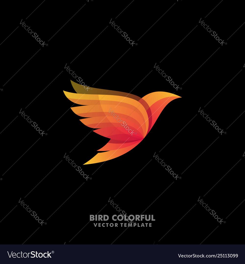 Bird concept designs template