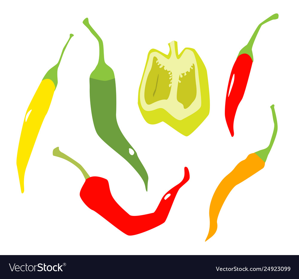 Various peppers in flat style isolated on white