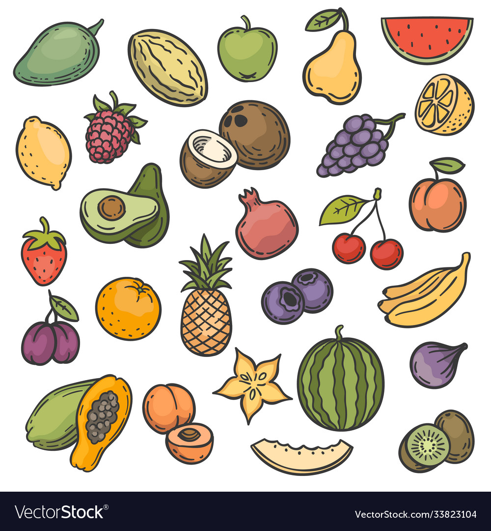 Sketch fruits hand drawn color fruits apple