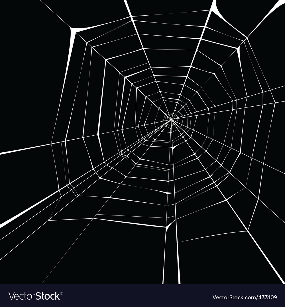 Spider Web Halloween Decorations: Spider Web Background Royalty Free Vector Image
