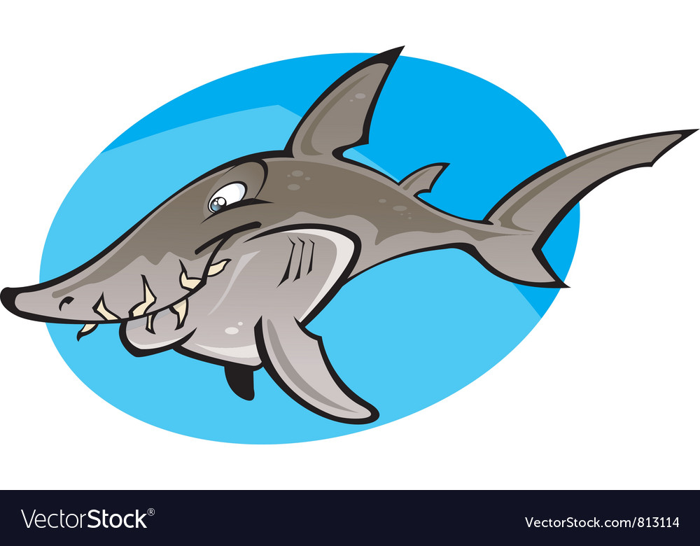 Cartoon Grey nurse shark vector image