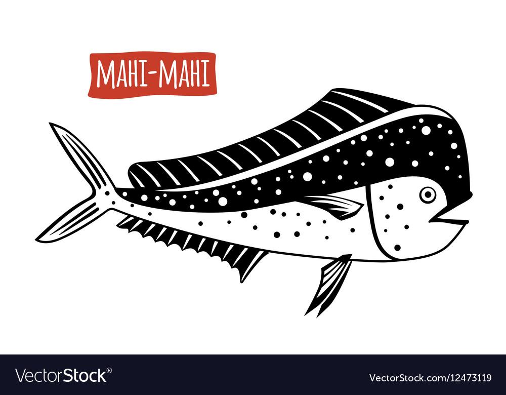 Mahi-mahi black and white vector image