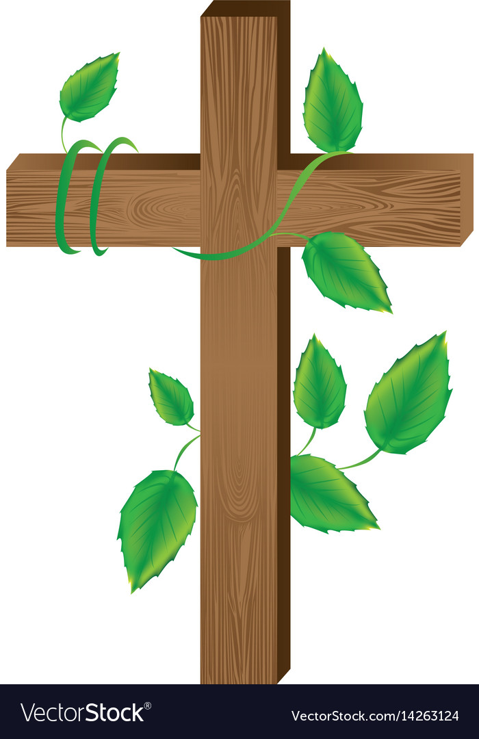 White background with wooden cross and creeper