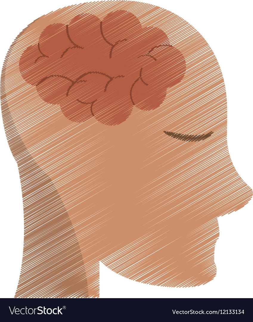 Drawing person head brain think