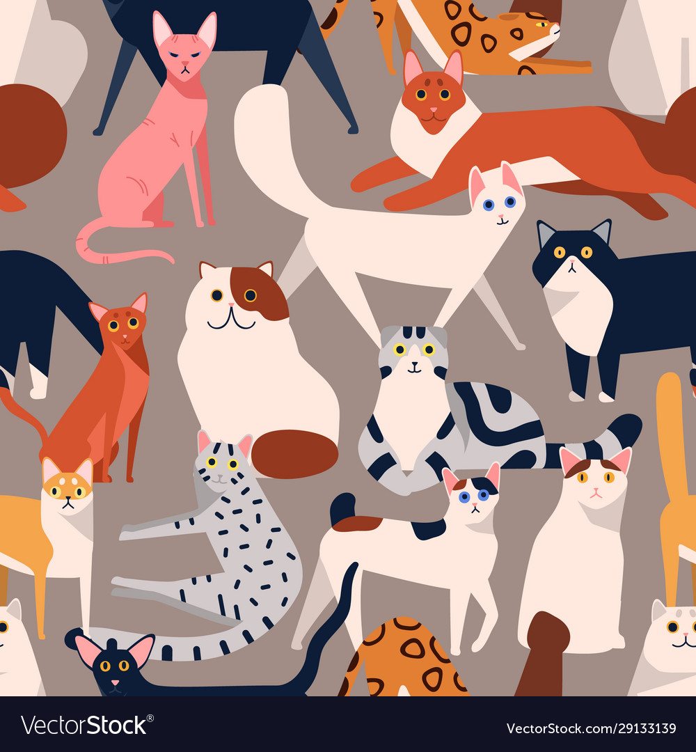Seamless colored pattern with different cat breeds