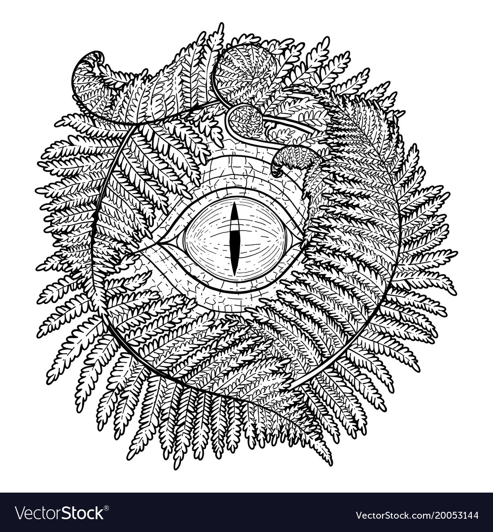 Graphic dinosaur eye and ferns vector image