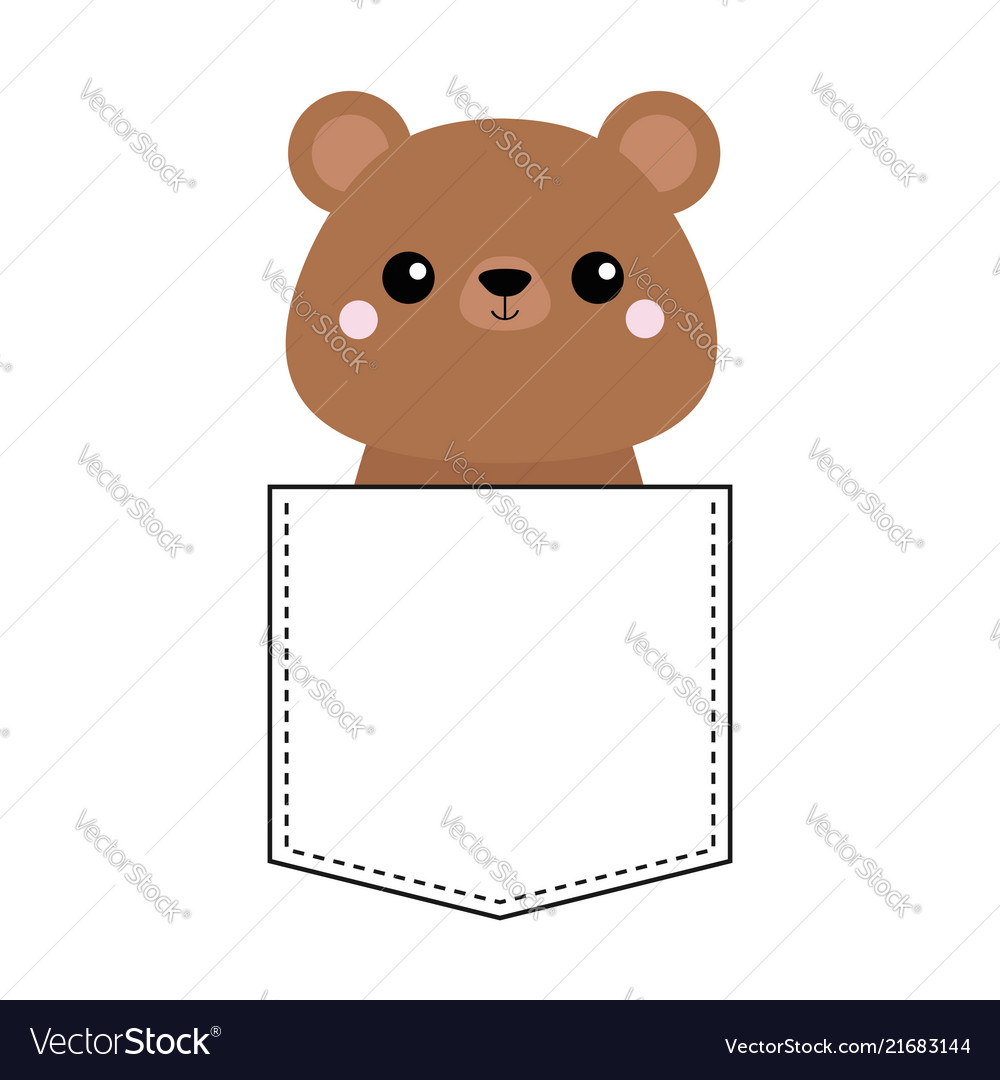 Grizzly bear head face in the pocket pink cheeks