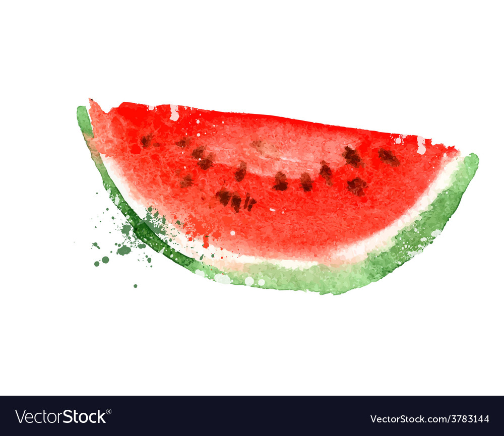 watermelon logo design template vitamins vector image