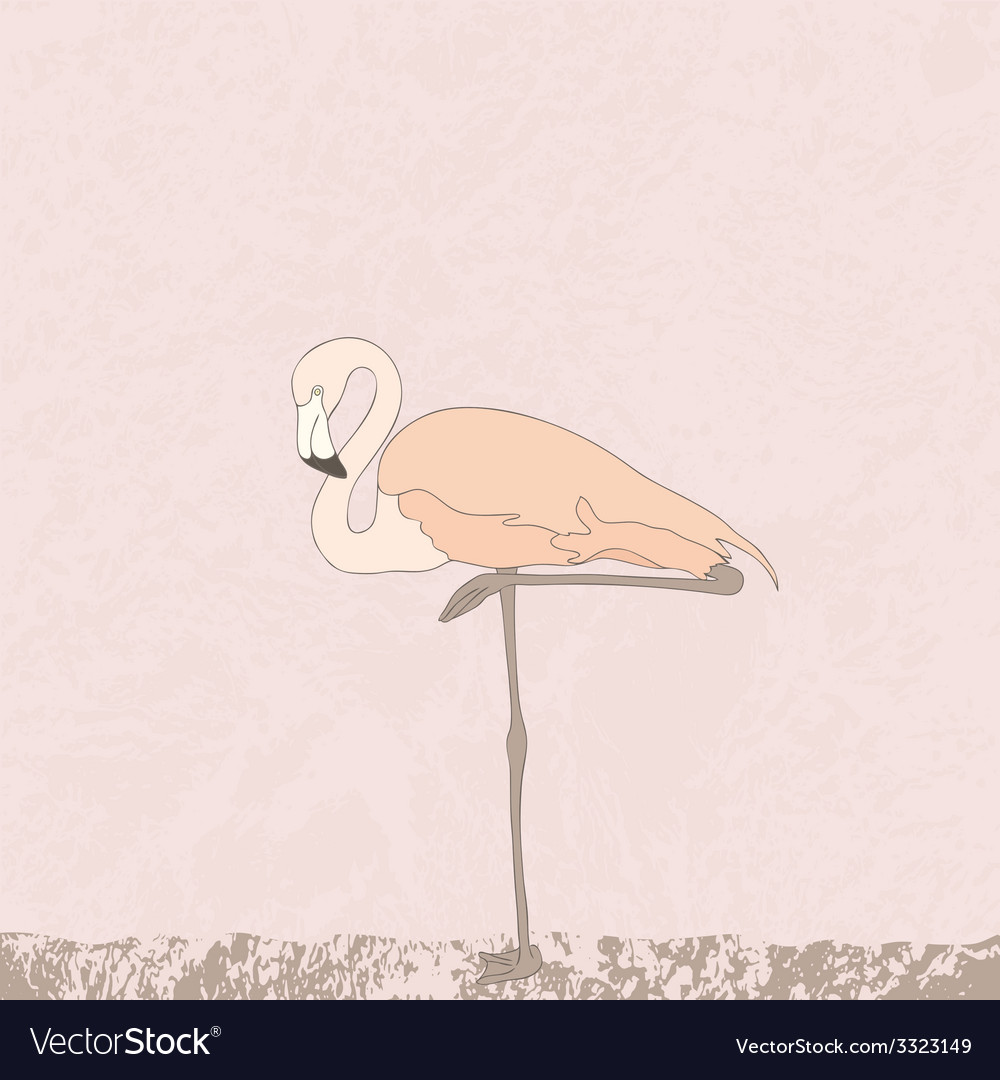 FlamingoStand4 vector image
