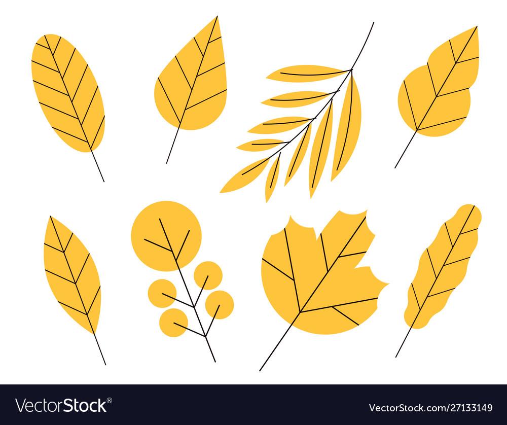 Set doodle floral elements autumn