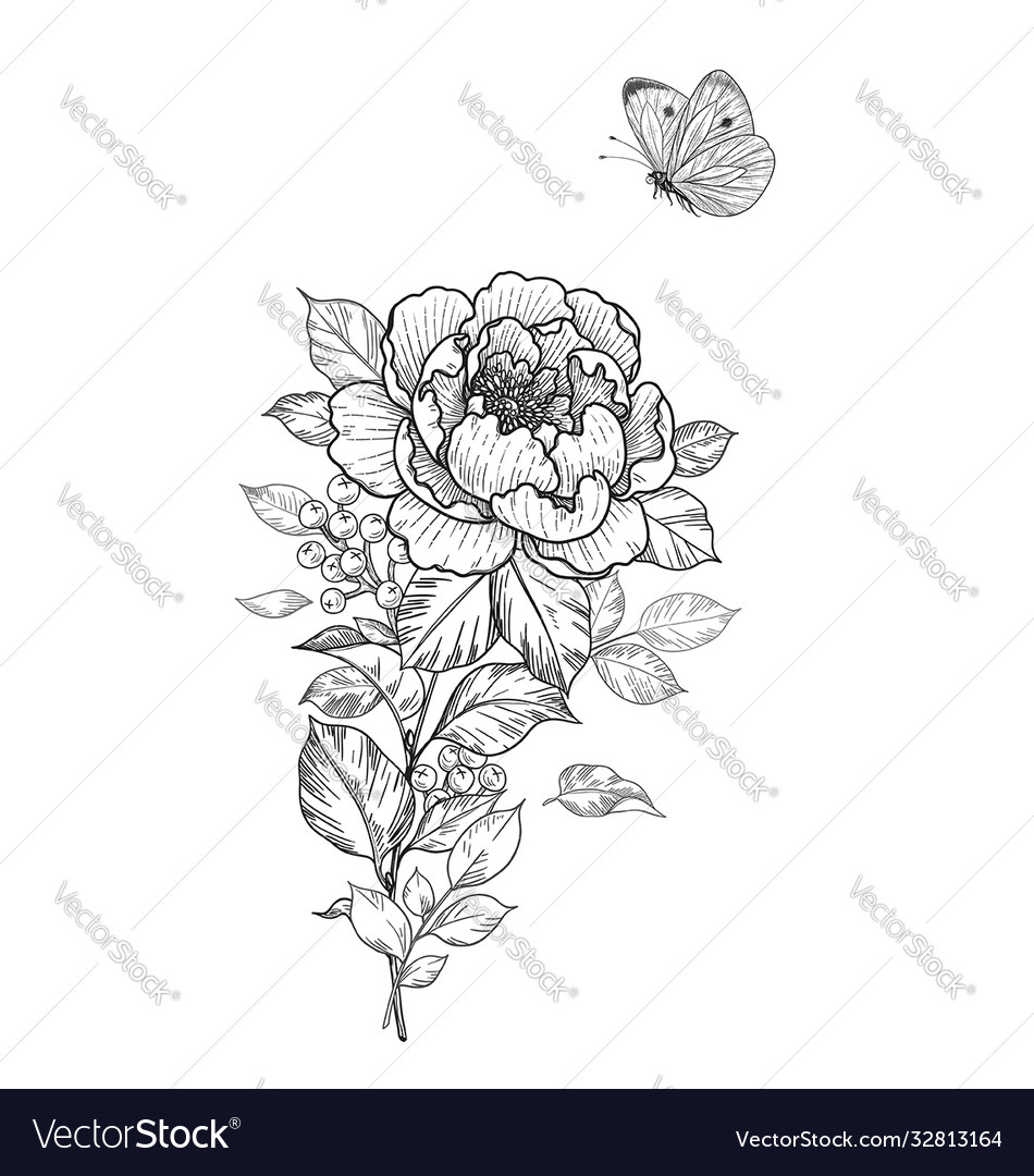 Hand drawn peony flower and flying butterfly