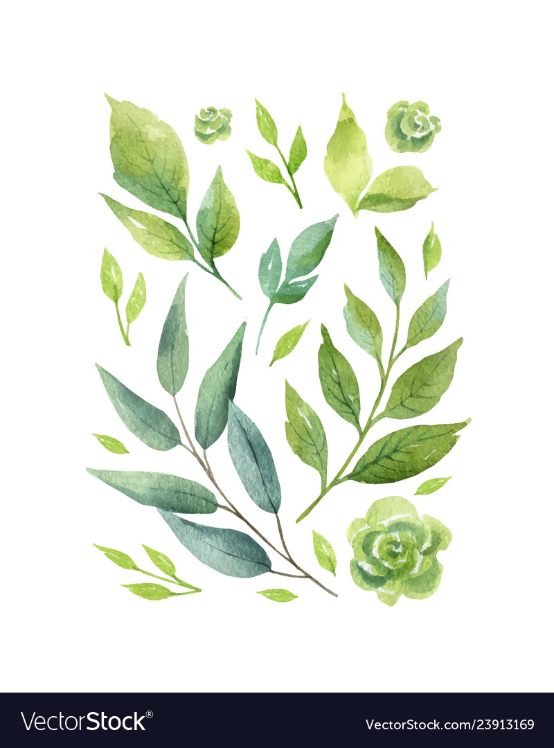 Watercolor card with green branches and
