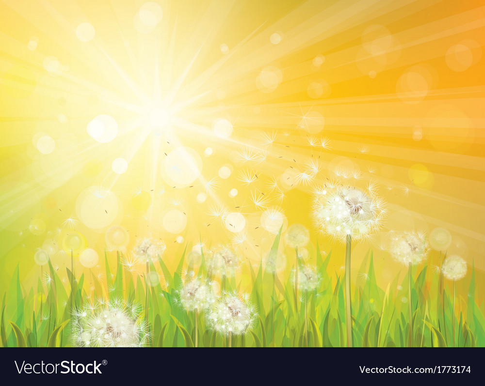 Spring background yellow