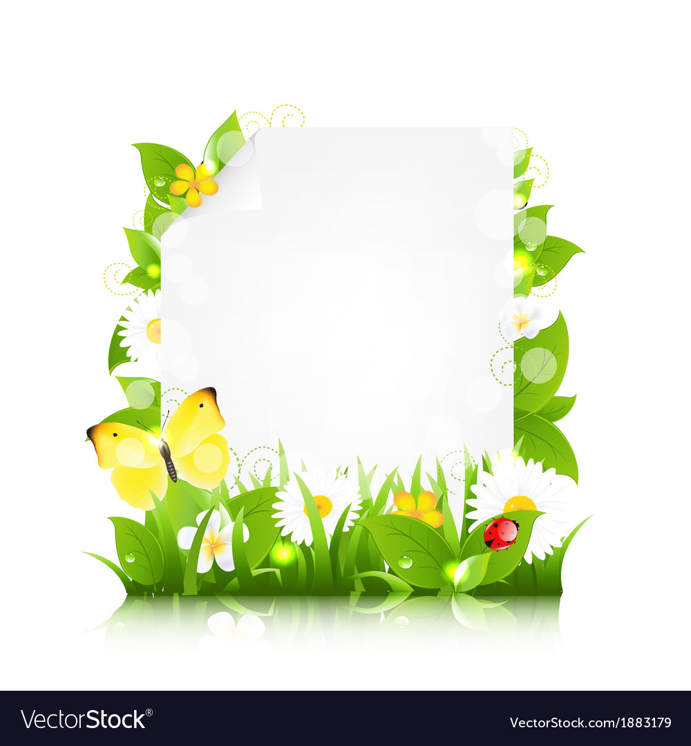 Paper With Flowers Leaves And Ladybug Royalty Free Vector
