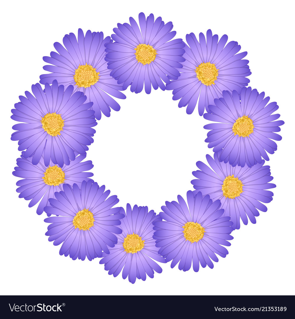 Purple Aster Daisy Flower Wreath Royalty Free Vector Image