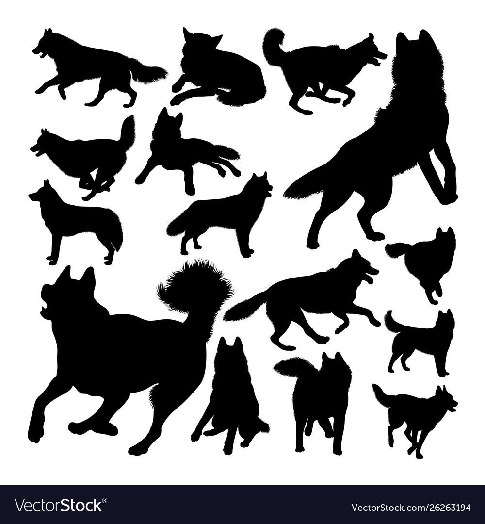 Husky dog animal silhouettes