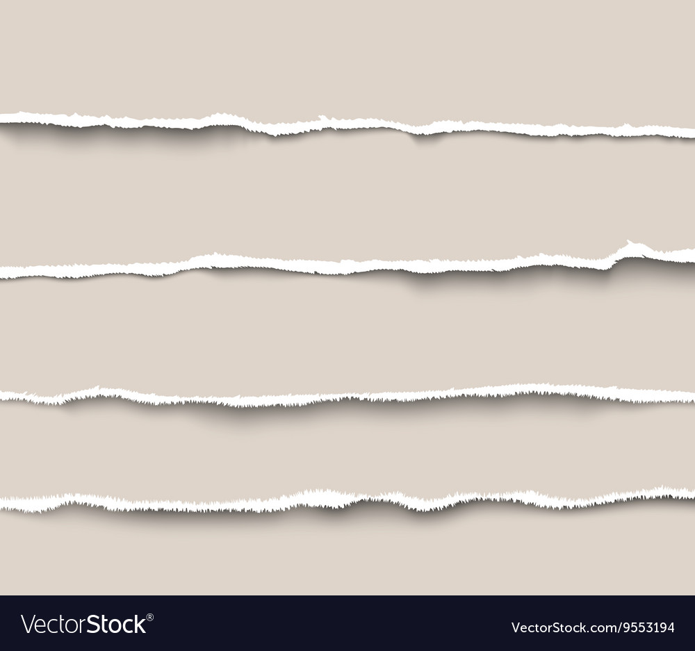 Set of torn paper dividers for websites and vector image