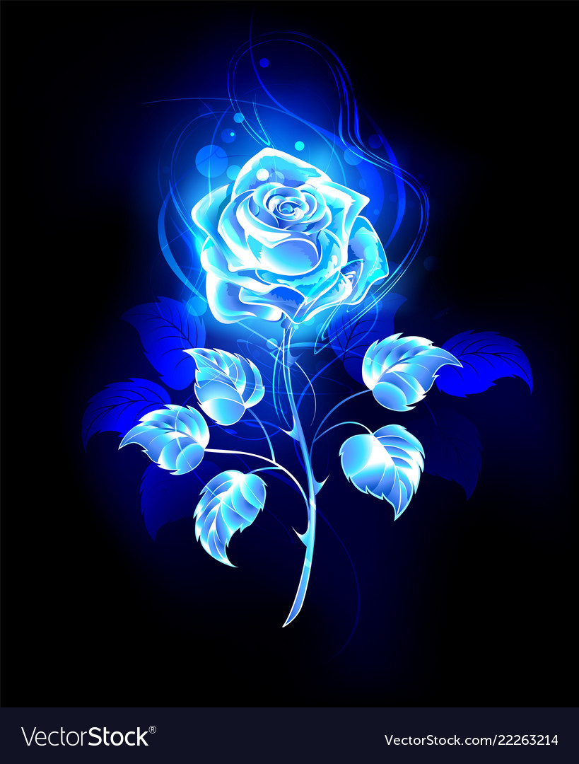 Burning Blue Rose Royalty Free Vector Image Vectorstock