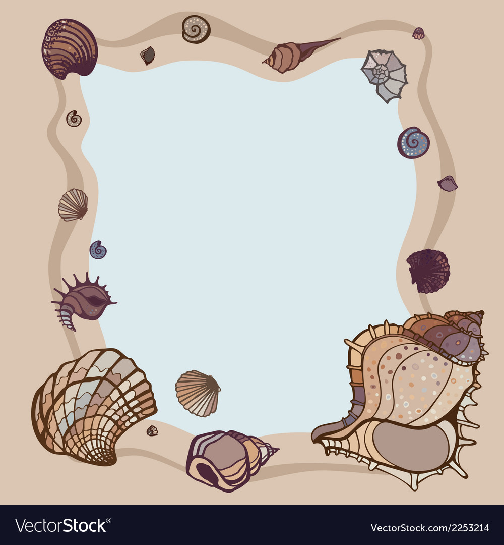 Summer Frame of seashells